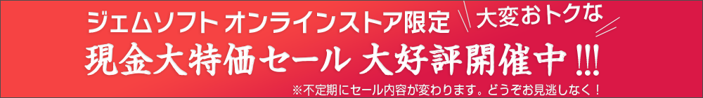 新発売限定 55%OFF 特大キャンペーン実施中