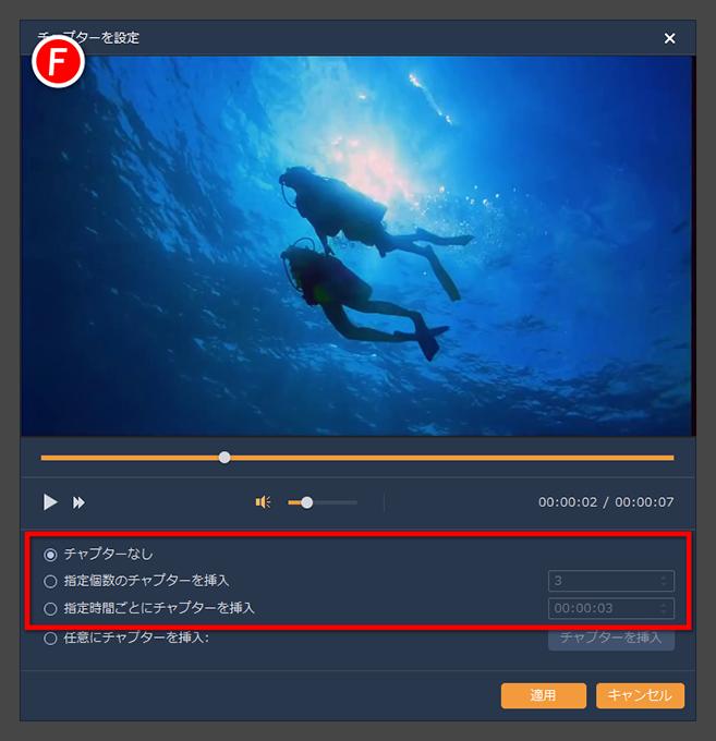 Video to BD/DVD X